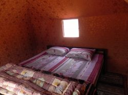 Wadi Rum Travel camp : tente individuelle lit double